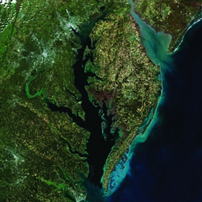 Landsat 8 Surface Reflectance Mosaic of Chesapeake Bay