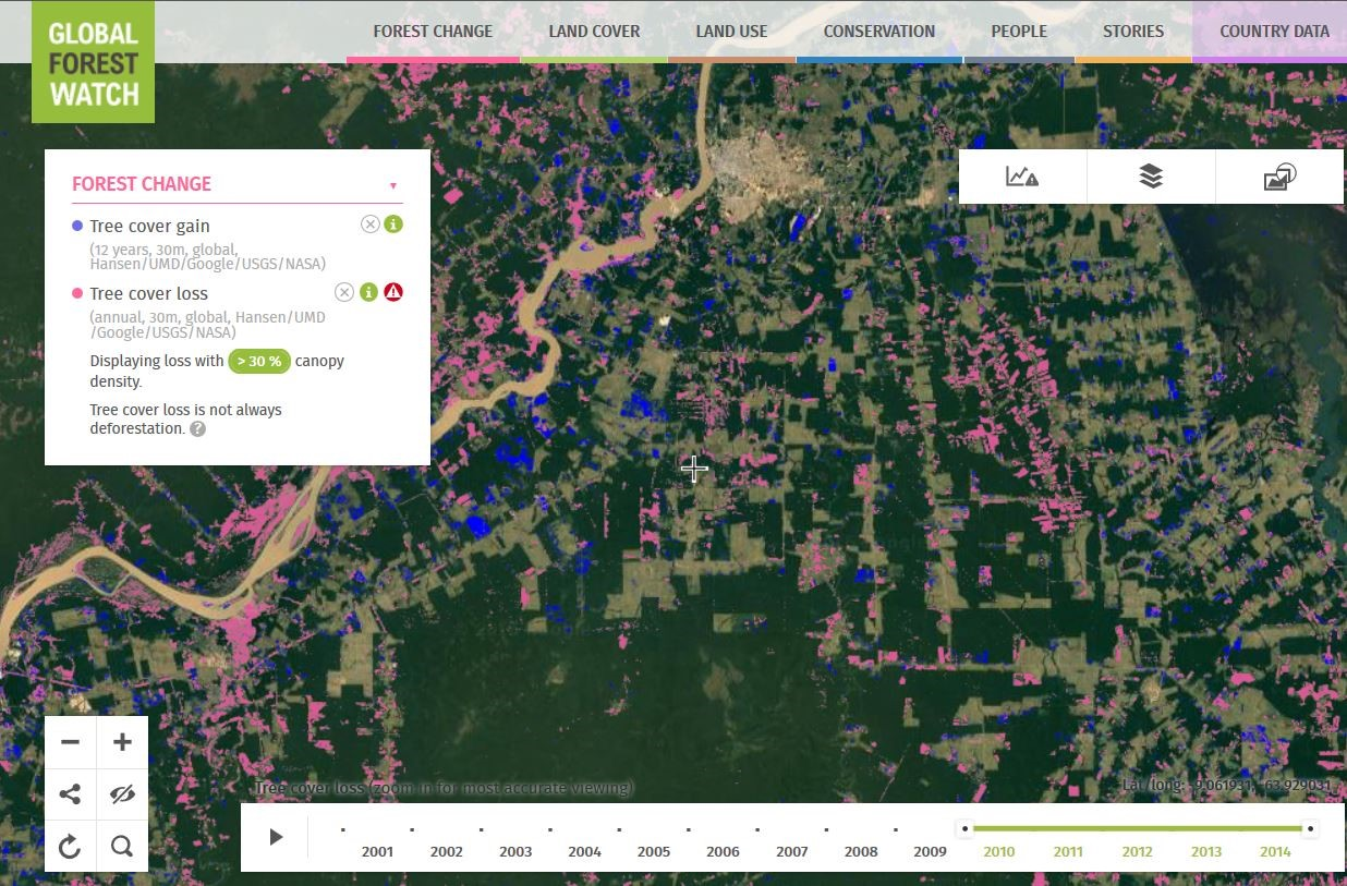 Global Forest Watch interface