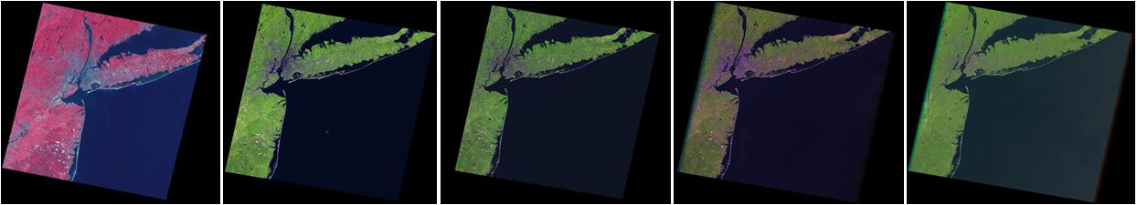 These images of New York City, New York and surrounding areas are examples of the Global Land Surveys (GLS) data sets. From left:  GLS1975, GLS1990, GLS2000, GLS2005, and GLS2010.